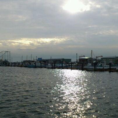 9/30/2011にSatoshi K.が金沢八景 忠彦丸 釣船・釣宿で撮った写真