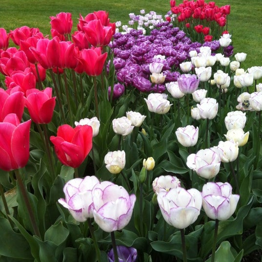 Photo taken at Hershey Gardens by Lynne D. on 4/15/2012