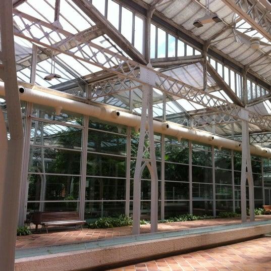 Palacio de cristal de la arganzuela invernadero - Invernadero de cristal ...