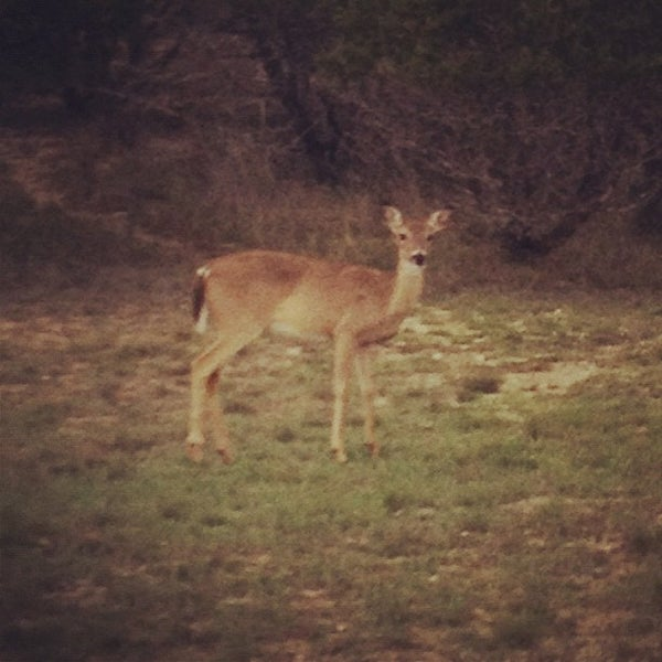 Photo taken at Potter's Creek Park by Allyson T. on 3/13/2012