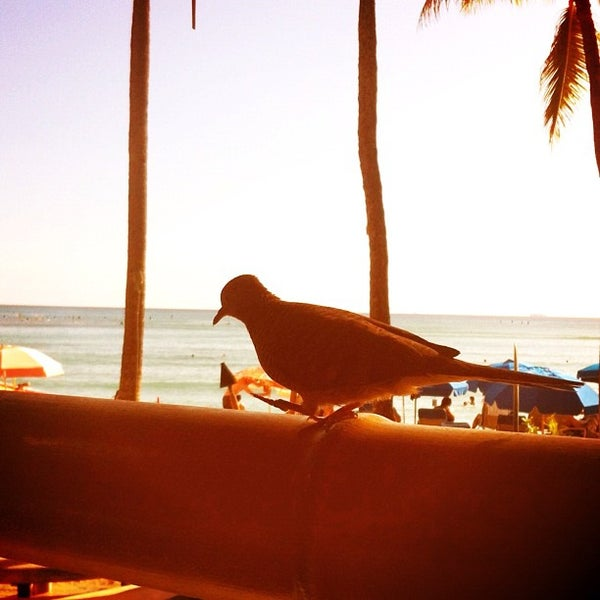 Photo taken at Duke's Waikiki by Jacob J. on 11/15/2011