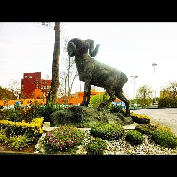 Foto tomada en Tecnológico de Monterrey por DiegoCL el 2/23/2012