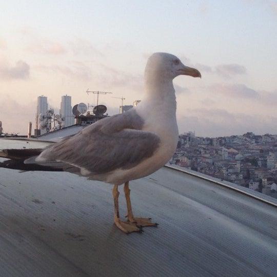 7/25/2012 tarihinde Ünal A.ziyaretçi tarafından Sanat'de çekilen fotoğraf