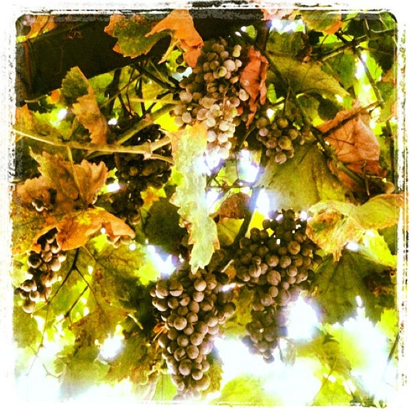 8/12/2012 tarihinde Burcu D.ziyaretçi tarafından Ada Cafe'de çekilen fotoğraf