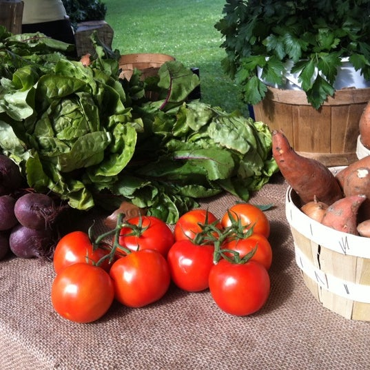 Best Farmers Market Food Toronto