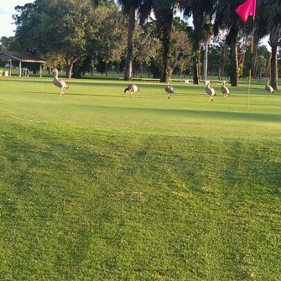 Photo taken at Palmetto Golf Course by Dedrick B. on 7/14/2012