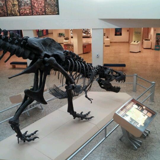 Natural History Museum Abq