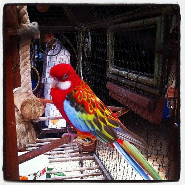 8/11/2012 tarihinde Esra Y.ziyaretçi tarafından Maria'nın Bahçesi'de çekilen fotoğraf