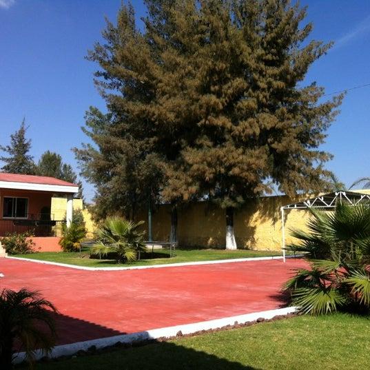 terraza la noria jardines -#main