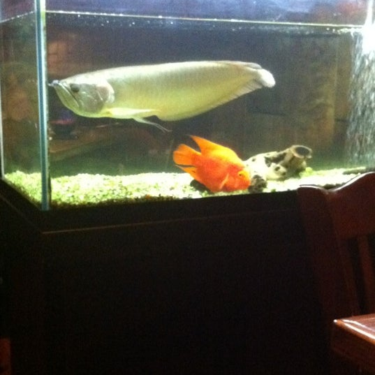 Photo taken at Tomo Japanese Cuisine by Vanessa M. on 7/8/2012