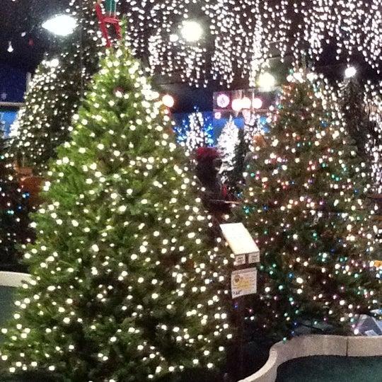 Robert's Christmas Wonderland - 10 tips