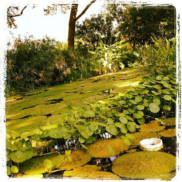 Foto tirada no(a) Dallas Arboretum and Botanical Garden por Bruno A. em 6/30/2012
