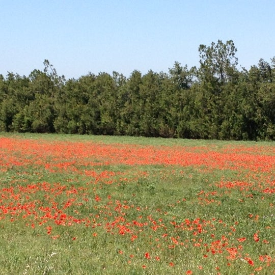 Photo taken at Luberon by Coskun K. on 5/24/2012