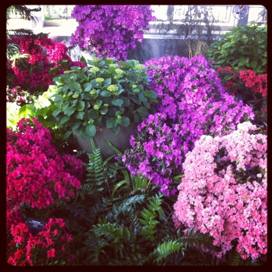 Photo taken at Garfield Park Conservatory by Michelle J. on 4/8/2012