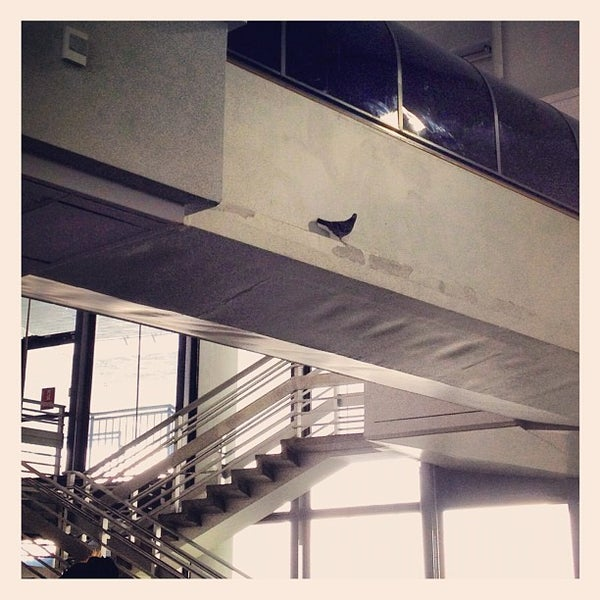 Photo taken at Terminal 3 by Haley P. on 7/16/2012
