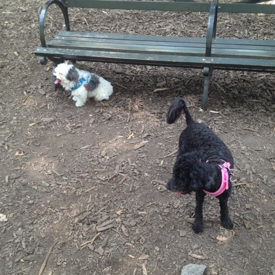 Photo taken at Marcus Garvey Park - Dog Run by Xiomara D. on 8/12/2012