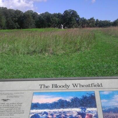 Photo taken at The Wheatfield by Gordon W. on 9/9/2012
