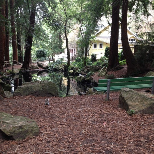 Photo taken at Sigmund Stern Grove by Michael B. on 3/5/2012