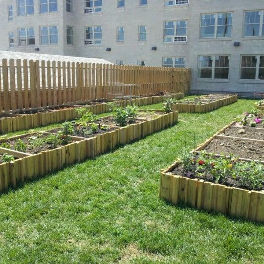 Photos at Urban Village Community Garden - Leavenworth - Omaha, NE