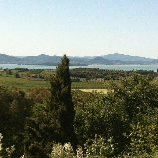 Foto scattata a Passignano sul Trasimeno da Rosa C. il 5/17/2012