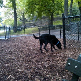 Photo taken at Marcus Garvey Park - Dog Run by Nicholas W. on 5/2/2012