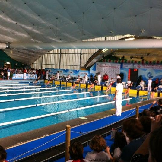 Piscina samuele federazione italiana nuoto mecenate for Piscina x cani milano