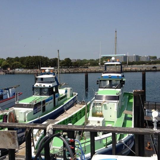 4/28/2012にYoshiharu. A.が金沢八景 忠彦丸 釣船・釣宿で撮った写真
