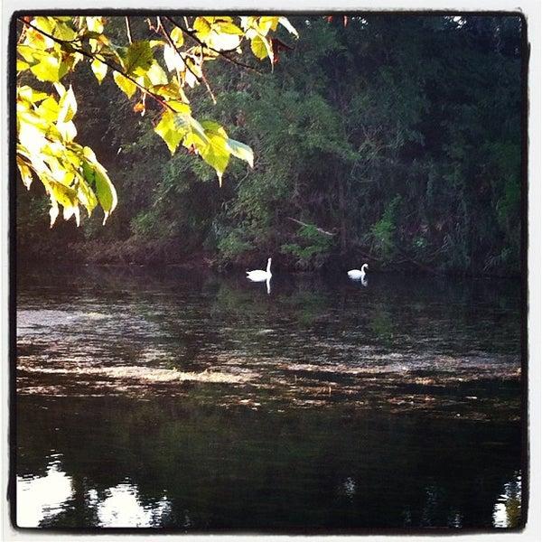 Photo taken at Lady Bird Lake Trail by Brooke M. on 8/20/2012