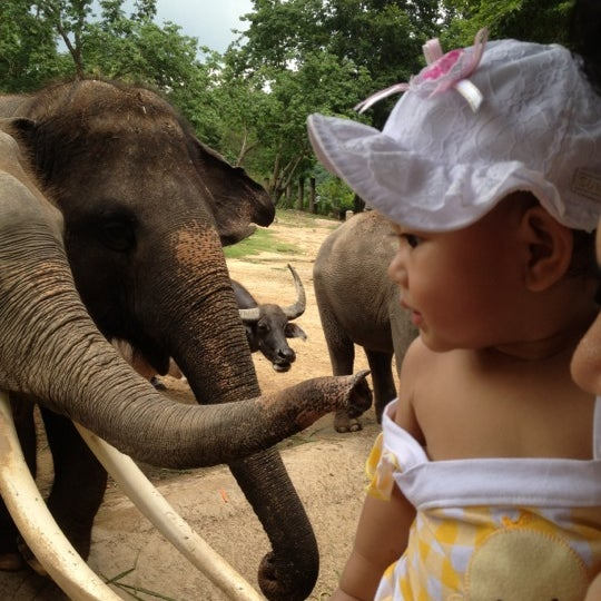 Photo taken at Khao Kheow Open Zoo by Nidnoi S. on 4/14/2012