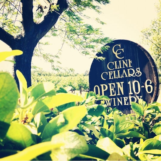Photo taken at Cline Cellars by Katy L. on 6/4/2012