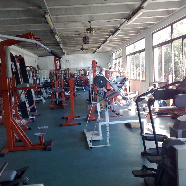 salle de musculation bodybuilding athl tisme et sports. Black Bedroom Furniture Sets. Home Design Ideas