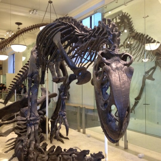 Photo taken at David H. Koch Dinosaur Wing by Kevin N. on 2/19/2012