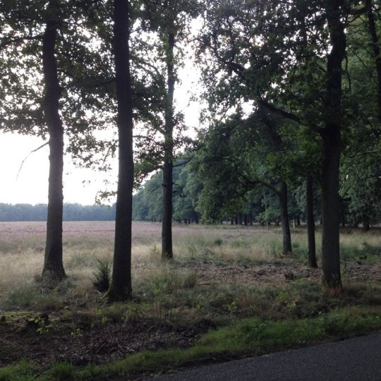 Photo taken at Nationaal Park De Hoge Veluwe by Carolina N. on 9/8/2012