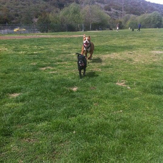 Photo taken at Laguna Canyon Dog Park by Nikki M. on 3/5/2012