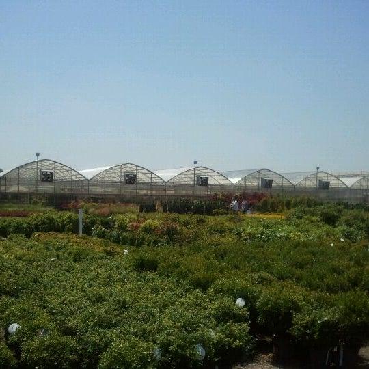 The Garden Factory 2126 Buffalo Rd