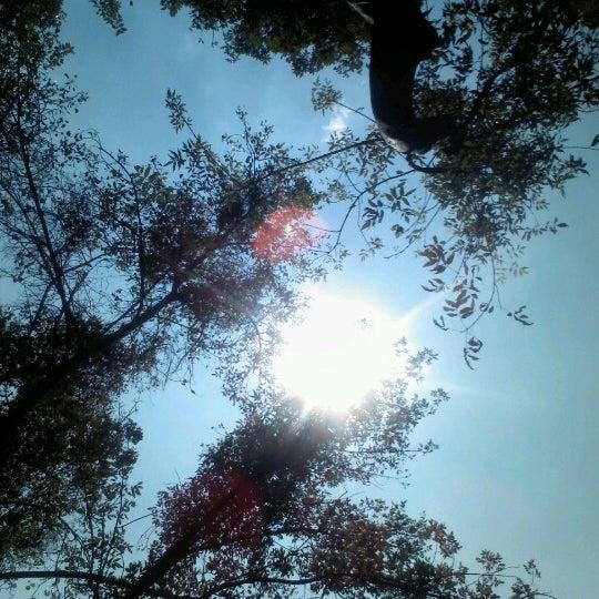 Photo taken at Jardin Morelos by K.rmz on 9/6/2012