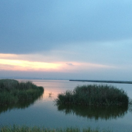 Photo taken at La Albufera by Edu C. on 9/8/2012