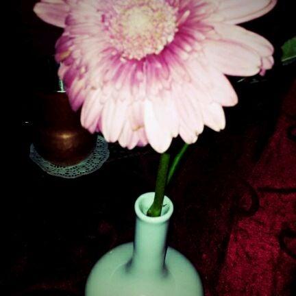 3/11/2012にVanessa L.がChakraで撮った写真