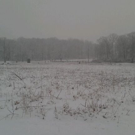 Photo taken at The Wheatfield by M J H. on 2/8/2012