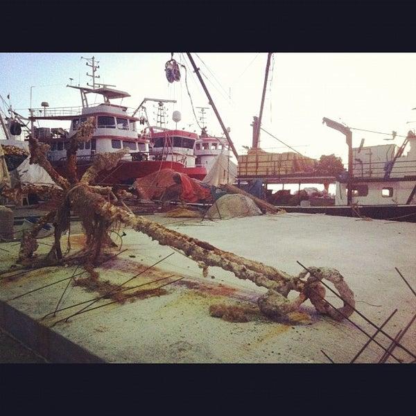 8/20/2012 tarihinde Esref O.ziyaretçi tarafından Küçükkuyu Limanı'de çekilen fotoğraf