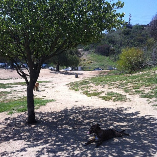How To Get To Laurel Canyon Dog Park