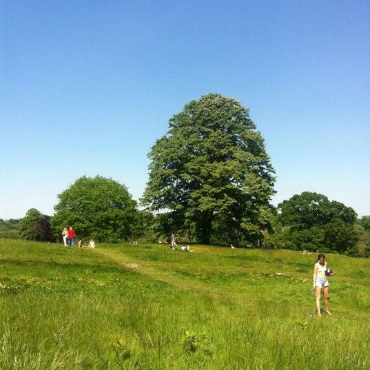 5/27/2012 tarihinde Steven G.ziyaretçi tarafından Hampstead Heath'de çekilen fotoğraf