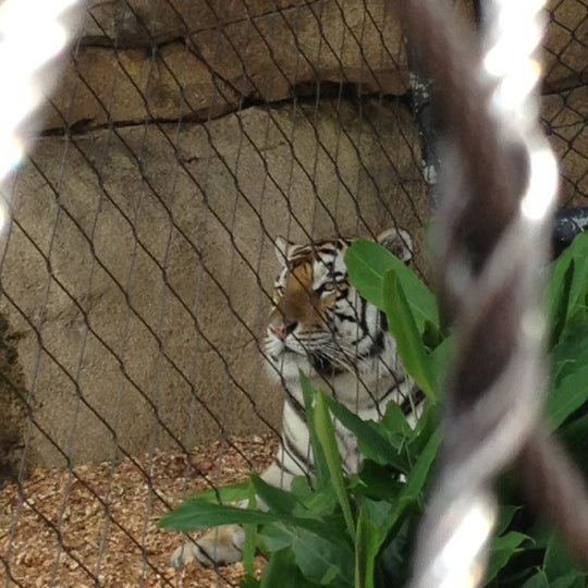Photo taken at LSU - Mike's Habitat by 7x T. on 7/27/2012