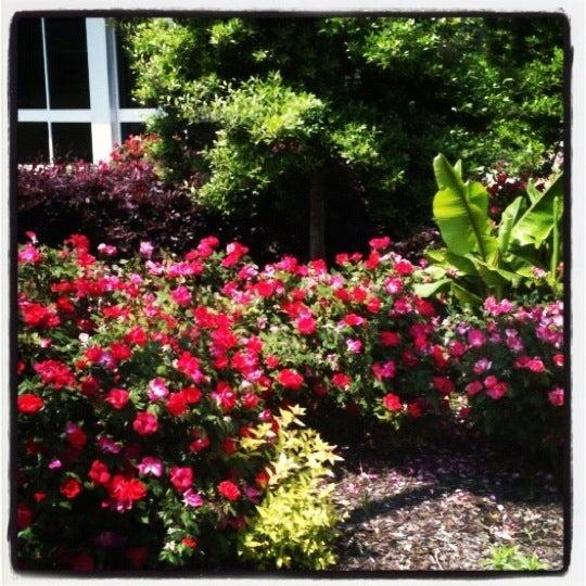 Снимок сделан в Pulaski Technical College пользователем Lauren R. 4/16/2012