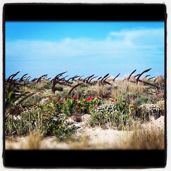 Photo taken at Praia do Barril by Anna A. on 5/24/2012