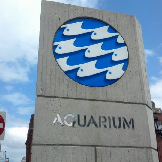 Photo taken at National Aquarium by Marcus T. on 8/10/2012