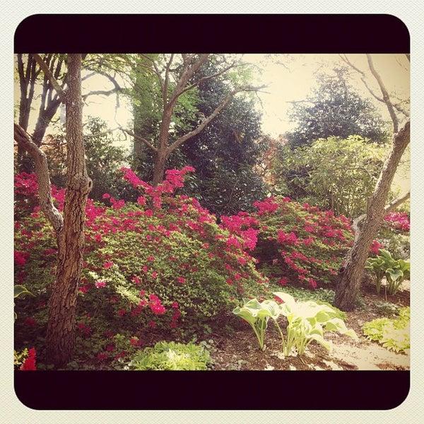 Photo taken at Planting Fields Arboretum by Korey K. on 4/29/2012