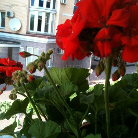 Снимок сделан в Viller пользователем Даша П. 4/28/2012