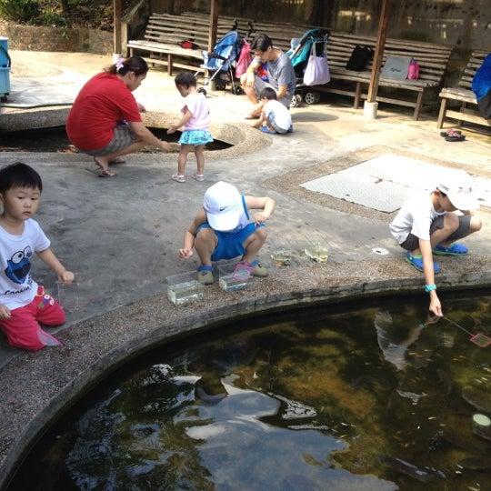 Qian hu fish farm farm in west region for Fish farm 3