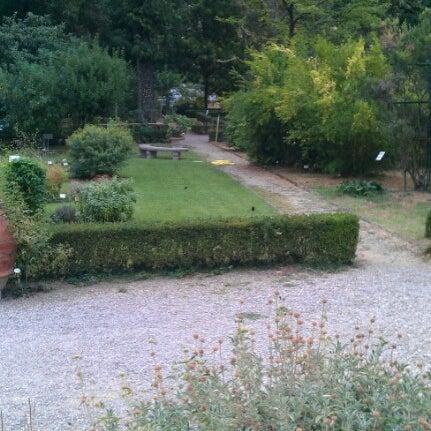 Photo taken at Museo di Storia Naturale, Orto Botanico by Ibrahim E. on 8/26/2012